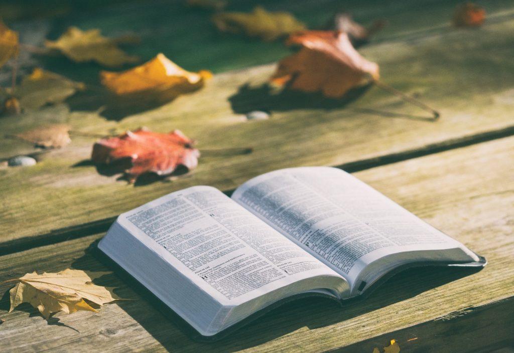 IKKE ET EVENTYR (om bibelen)